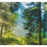Аура леса 2.8.8.208
